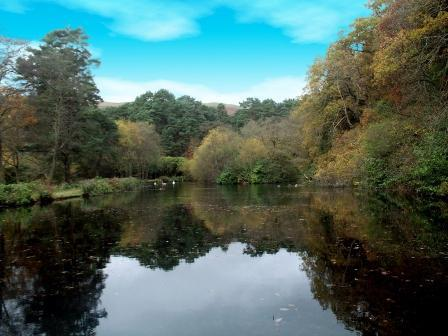 Dog Friendly hotels Wales - Craig y Nos Country Park large lake