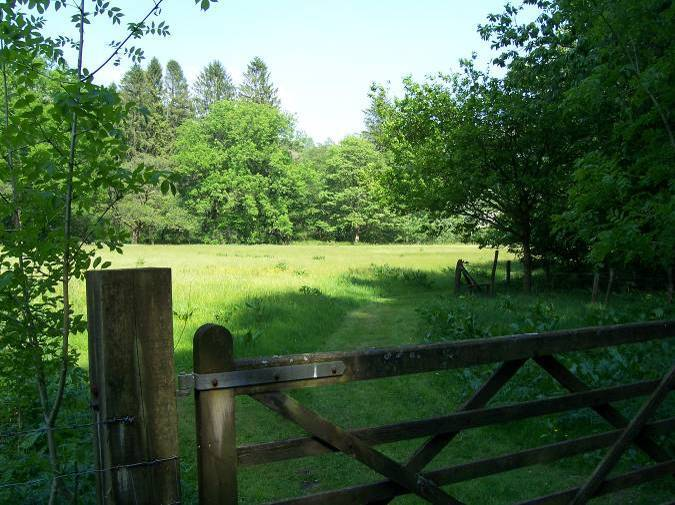 Dog Friendly B&B - Craig y Nos Country Park in Wales