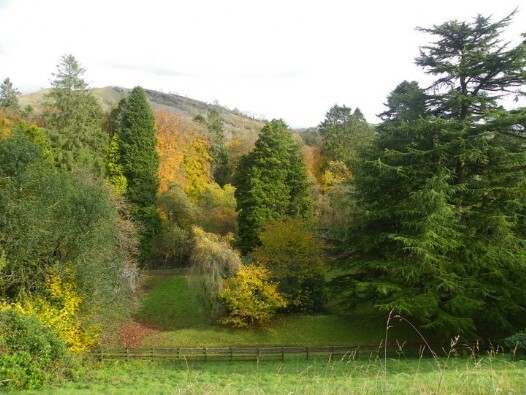 Dog Friendly hotels Wales - Craig y Nos Country Park view from castle