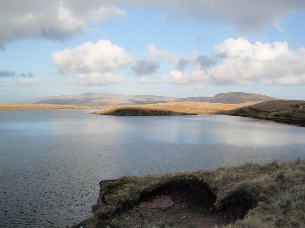 Dog Friendly Accommodation Brecon Mountain Dog Walk