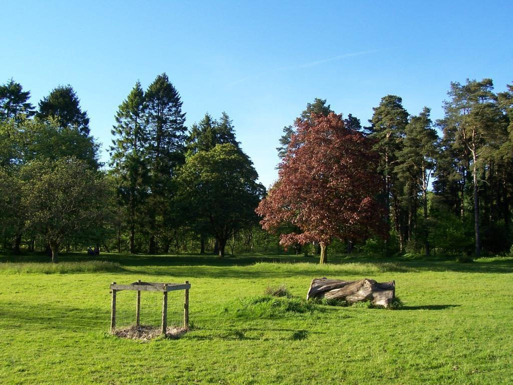 Dog Friendly Holidays Brecon Wales Craig y Nos Country Park picnic meadow