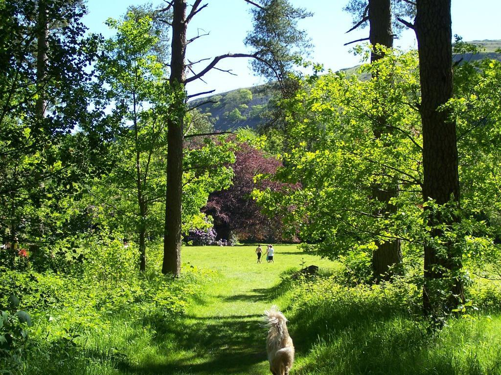 Dog Friendly Holidays in Brecon Wales Craig y Nos Country Park path to picnic meadow
