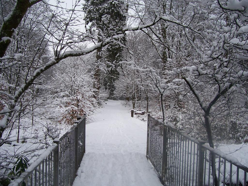 Dog Friendly Hotel Swansea Wales Metal railed footbridge over River Tawe in Craig y Nos Country Park in Winter Snow