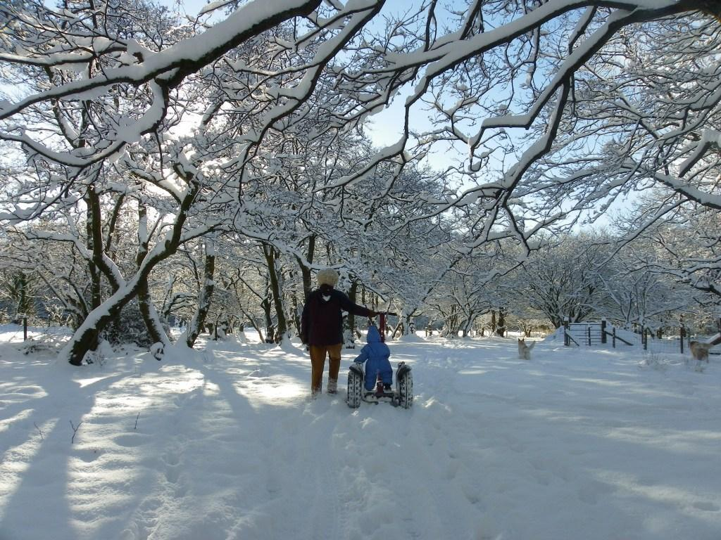 Dog Friendly Hotel Swansea Wales Craig y Nos Country Park Daneil Gover rides Segway in Winter Snow