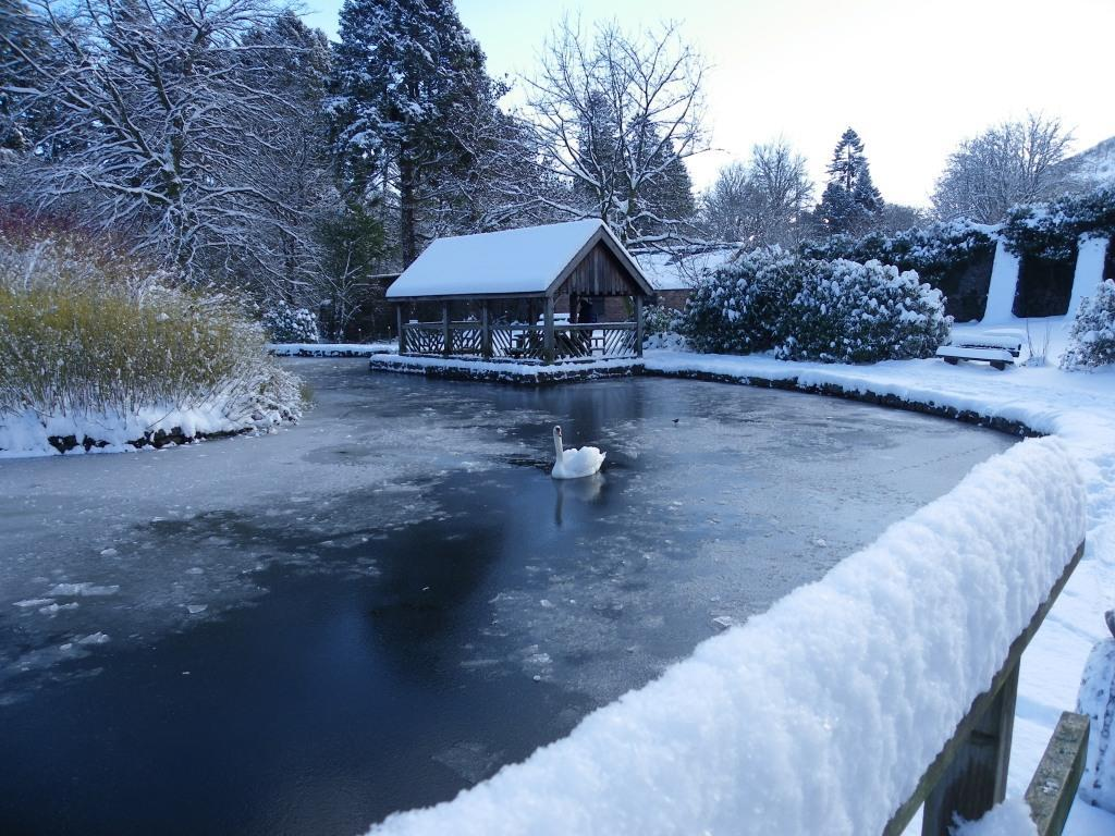 Dog Friendly Hotel Swansea Wale Craig y Nos Country Park boating lake with swan in Winter Snow and ice