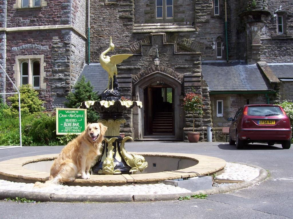 Dog Friendly Hotel Jack the dog at Craig y Nos Castle fountain