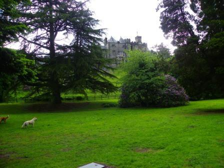 Dog Friendly B&B - Craig y Nos Castle Lower Gardens in Wales