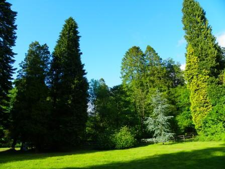 Dog Friendly B&B - Lower Gardens at Craig y Nos leading to the Country Park in Wales