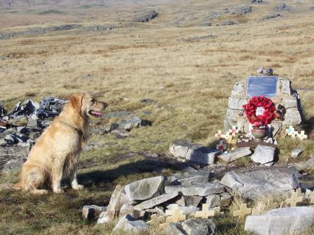 Dog Friendly holiday in Brecon Beacons National Park - Craig y Nos Mountain Plane Wreck with remembrance poppies
