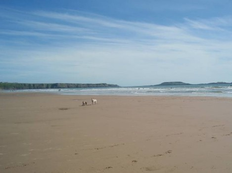 Dog friendly hotels Wales - Rhossilli Bay Beach Walk