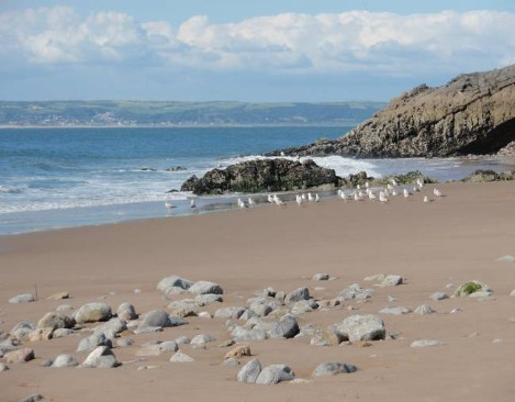 Dog friendly hotels Wales - Rhossilli Bay Dog Walk