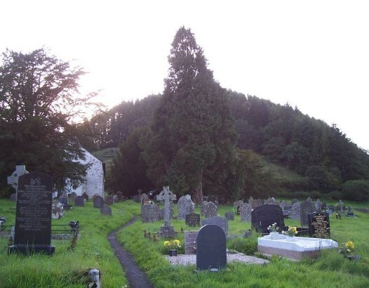 Dog Friendly B&B Wales - a dog's visit to Talley Abbey church graveyard