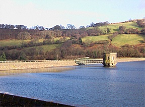 Dog friendly hotels Wales - Talybont on Usk Reservoir dog walk