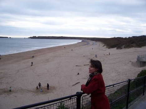Dog Friendly B&B Wales - a dog's day out in Tenby with view of the long dog walking sands and bay