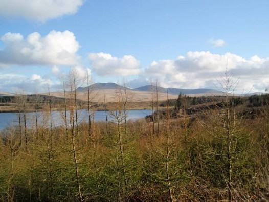 Dog friendly B&B Wales - Usk Reservoir Walk mountain scenery