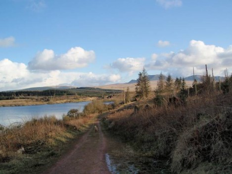 Dog friendly B&B Wales - Usk Reservoir Dog Walk with mountain scenery