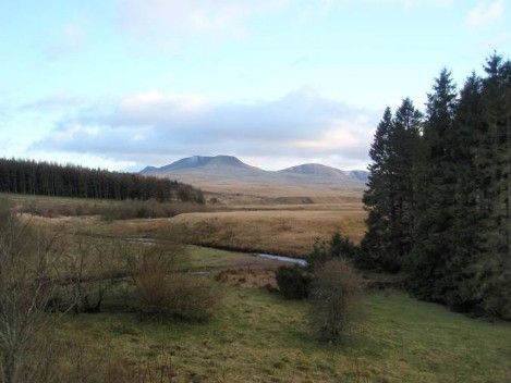 Dog friendly B&B Wales - Usk Reservoir dog Walk views of mountains